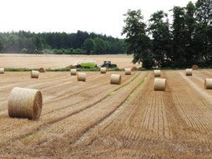 Getreideernte - Bauern können nicht von ihrer Arbeit leben