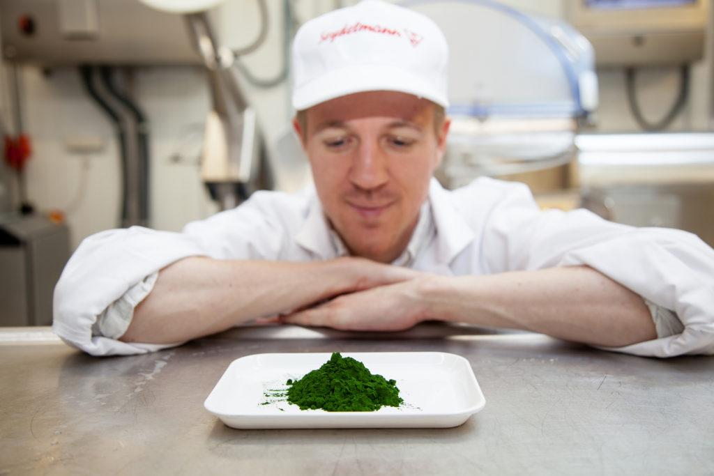 Ein Forscher begutachtet einen Teller mit Mikroalgenpulver zur Wurstherstellung