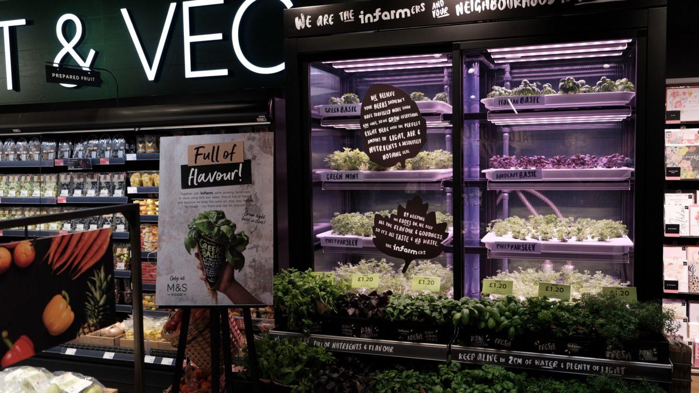 Klimakammer für Gemüse- und Kräuterzucht in Supermarkt