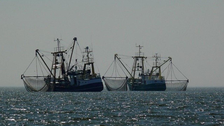 Fischtrawler auf hoher See