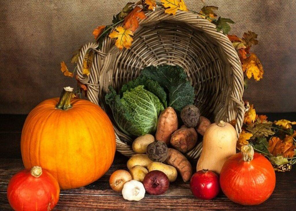 Flechtkorb mit Kohl, Kürbis, Zwiebeln und Kartoffeln