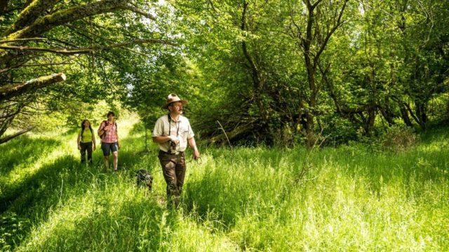 Ein Ranger führt Wanderer durch die Wildnis des Nationalparks Eifel und zeigt ihnen die Natur Eifel