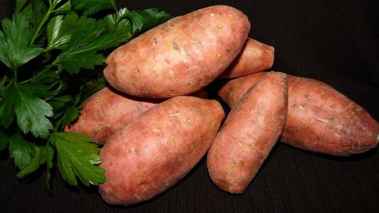 ein kleiner Haufen Süßkartoffeln