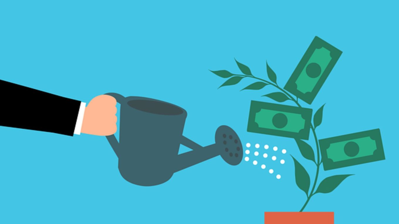 Karikatur: Topf, in dem ein Pflänzchen mit grünen Geldscheinen gedeiht, wird gegossen